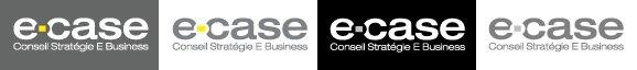 Logotype E Case utilisation et création