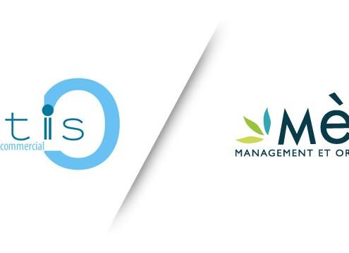 Création de logo et de charte graphique mètis
