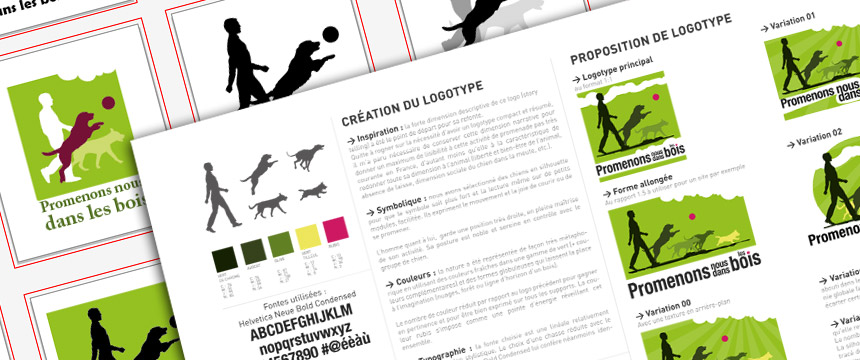 rough-et-preparation-creation-de-charte-graphique-PNDB