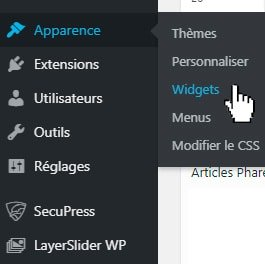 apparence widget