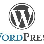 Création d'un site WordPress par un professionnel