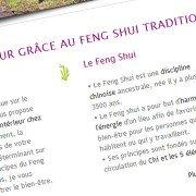 Creation de site WordPress effet feng-shui