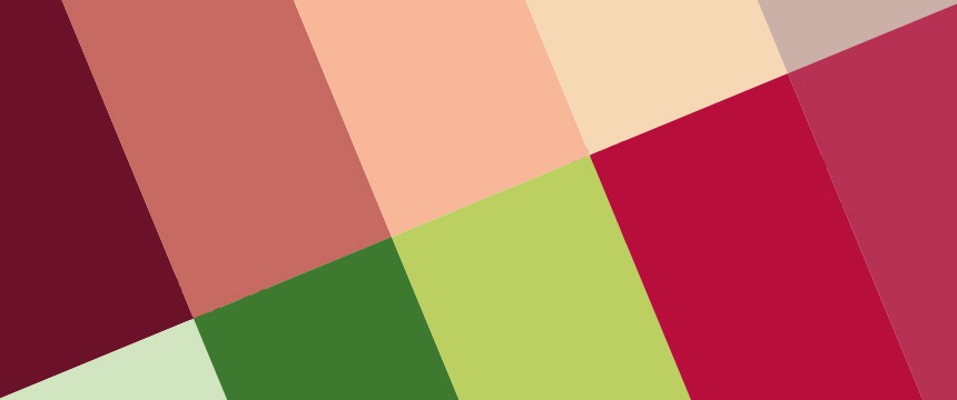 creation logo eclore couleur