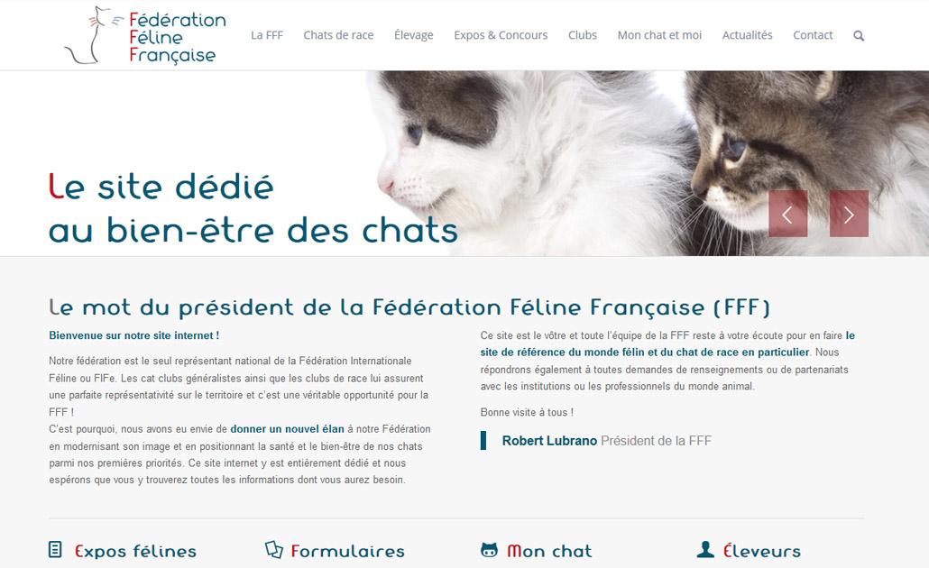 création site wordpress fff