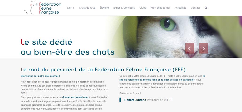 fff page accueil