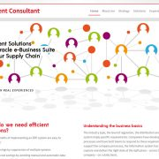 Création site WordPress consultant-Oracle