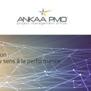 ankaa pmo creation de site WordPress