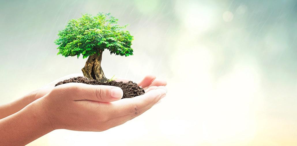astuces pour limiter votre empreinte écologique sur le web
