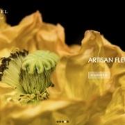 Coté naturel Fleuriste Chambéry